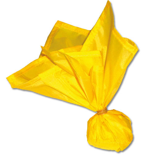 Flag Football Official's Penalty Flag